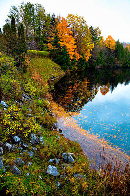 Fir Trees Photograph - The Moose River In Old Forge New York by David Patterson