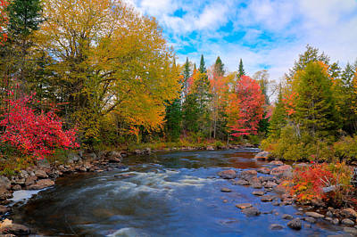 The Moose River On A Beautiful Fall Day Print by David Patterson