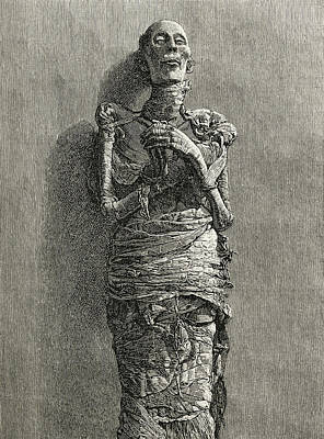 The Mummy Of Ramesses II, Reigned 1279 Print by Vintage Design Pics