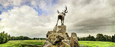 Hamels Photograph - The Newfoundland Caribou Above The Trenches by Weston Westmoreland