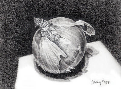 Onion Drawing - The Onion by Nancy Cupp