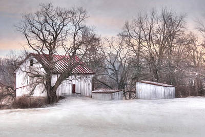 The Onion Snow Print by Lori Deiter