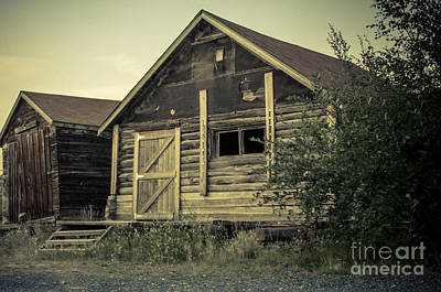 Yellowknife Photograph - The Other Old Shed by Lisa Killins