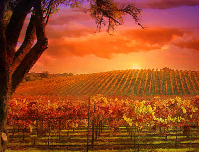 The Other Side Of Oz Vineyard Print by Stephanie Laird