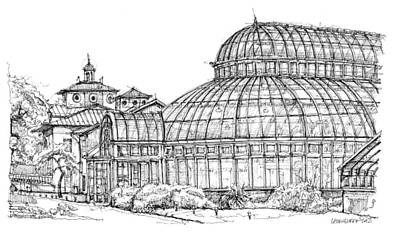 Central Park Drawing - The Palm House In Brooklyn  by Building  Art