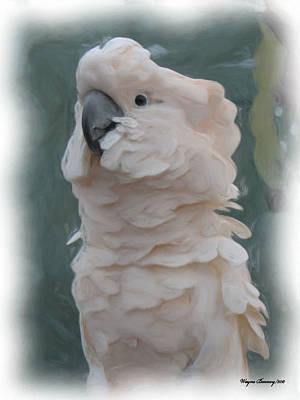 Parakeet Digital Art - The Parakeet by Wayne Bonney