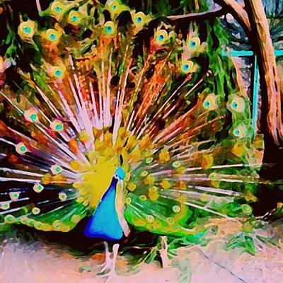 Peacock Photograph - The Peacock. Glorious Bird! #peacock by Flash28photography