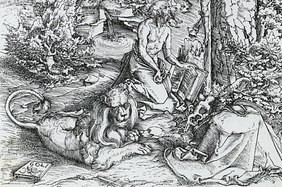 Lion Drawing - The Penitence Of Saint Jerome by Lucas the elder Cranach