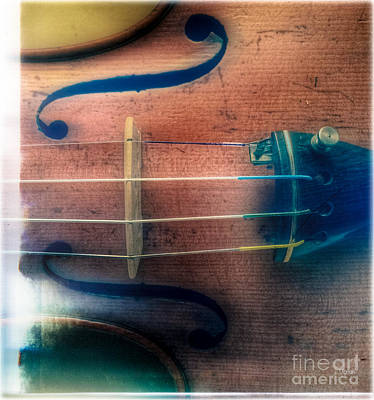 Violin Digital Art - The Quatrain  by Steven Digman