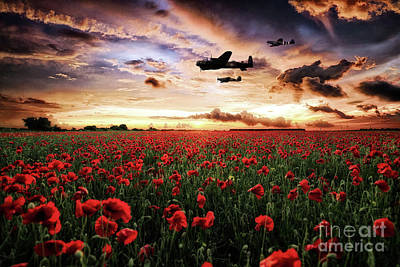 Poppies Digital Art - The Raf's Finest by J Biggadike