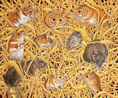 Gerbil Painting - The Raiders Of The Ark by Ditz