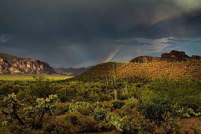 Rainy Day Photograph - The Rainbow And The Rain  by Saija Lehtonen