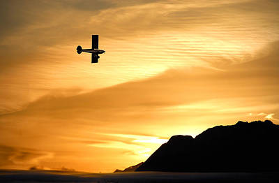 Alaska Photograph - The Reason by Ron Day