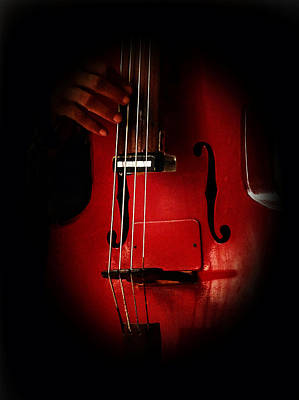 Jazz Musician Photograph - The Red Cello by Connie Handscomb
