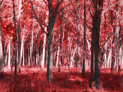 Fantasy Tree Mixed Media - The Red Forest by Dan Sproul