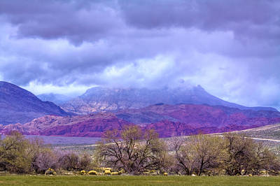 Landscape Photograph - The Red Rocks In Nevada by David Patterson