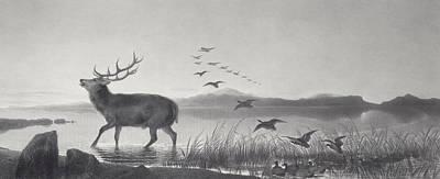 The Rescue Print by Edwin Landseer