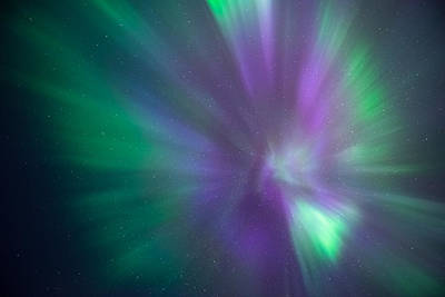Aurora Photograph - The Rose by Tor-Ivar Naess