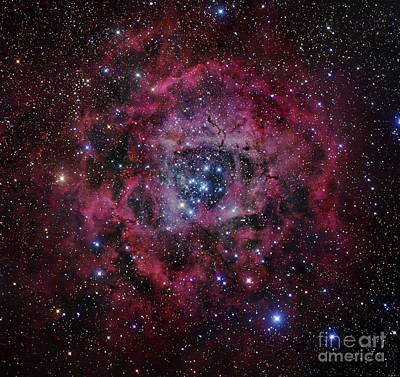 Monoceros Photograph - The Rosette Nebula by Robert Gendler