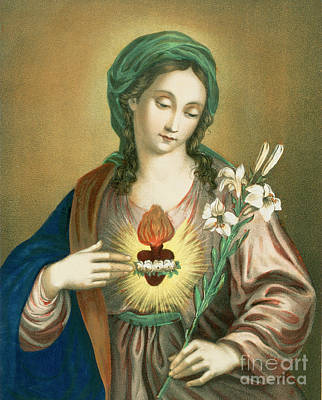 Religious Drawing - The Sacred Heart Of Mary by German School