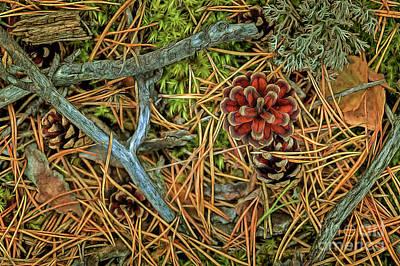 Lichen Photograph - The Scent Of Pine Forest II by Veikko Suikkanen