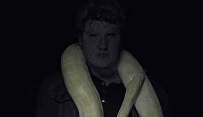 Animals Digital Art - The Serpent by Michael Baker