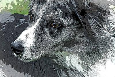 Breed Digital Art - The Shepherd by Adriana Zoon