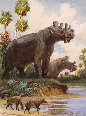 The Six-horned Uintatheres Thrived Print by Charles R. Knight