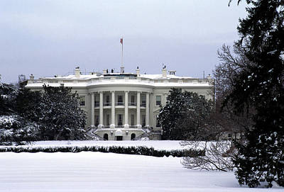 The South View Of The White House Print by Stacy Gold