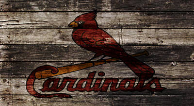 Grapefruit Mixed Media - The St Louis Cardinals W1 by Brian Reaves