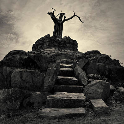 Contemplative Photograph - The Stone Steps II Toned by David Gordon