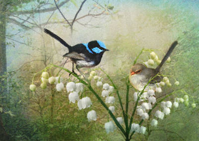 Wren Digital Art - The Sweetest Thing by Trudi Simmonds