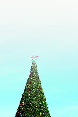 The Tallest Christmas Tee- Photograph By Linda Woods Print by Linda Woods