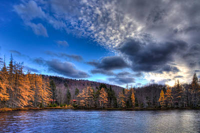 The Tamaracks On Lake Kan-ac-to Print by David Patterson