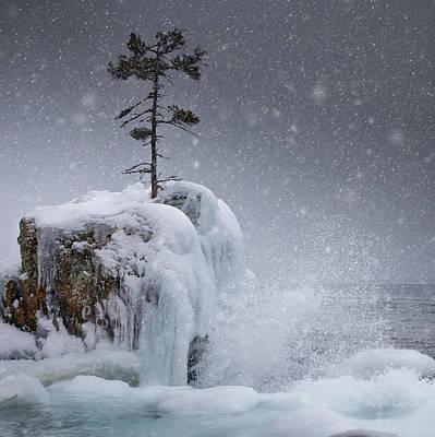 The Tee Harbour Rock Print by Jakub Sisak