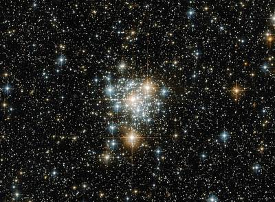 Nasa Photograph - The Toucan And The Cluster by Jaydip Makwana