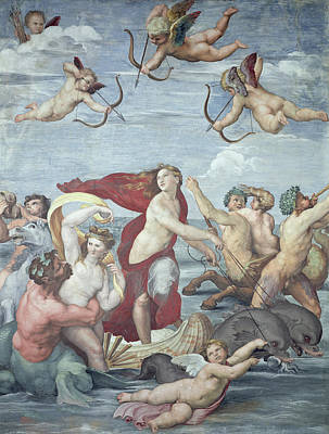 Dolphin Painting - The Triumph Of Galatea by Raphael