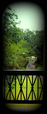 The View Out Back Of Oak Alley Plantation From 2nd Floor Print by Anita Hiltz