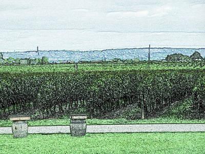 Grapes Digital Art - The Vineyards Of Niagara Region by Leslie Montgomery