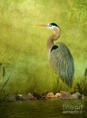 Heron Digital Art - The Wait by Beve Brown-Clark Photography