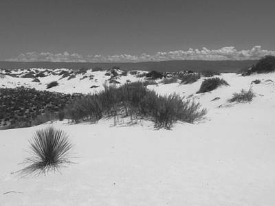 The White Sands, Nm Print by Lori Thompson
