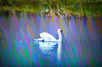 River Photograph - The White Swan by Bill Cannon