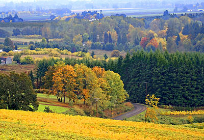 The Willamette Valley Print by Margaret Hood