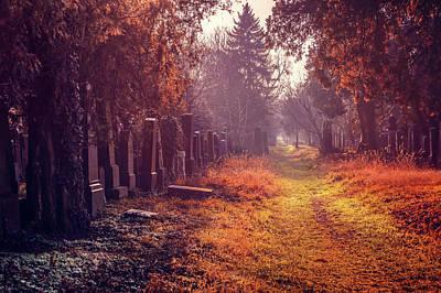 Gravestone Photograph - The Winter Path  by Carol Japp