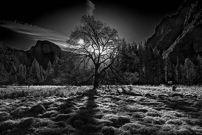Tree Spirit Photograph - The Winter Spirit by Simon Chenglu