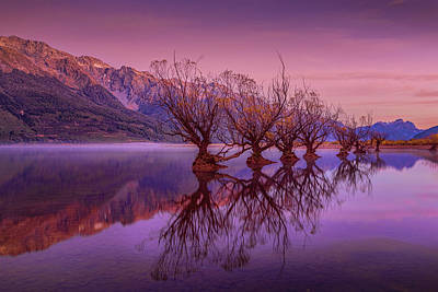 Aotearoa Photograph - The Witches Of Glenorchy Pt 2 by Kumar Annamalai