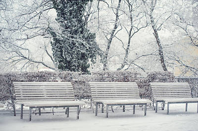 Park Benches Photograph - The World Of White by Jenny Rainbow