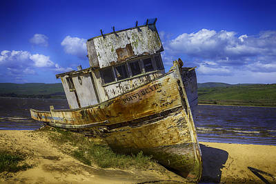 The Wreck Of The Point Reyes Print by Garry Gay