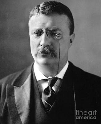 Theodore Roosevelt Print by MotionAge Designs