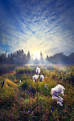 Milkweed Photograph - There Are Times I Fear I Lose Myself by Phil Koch